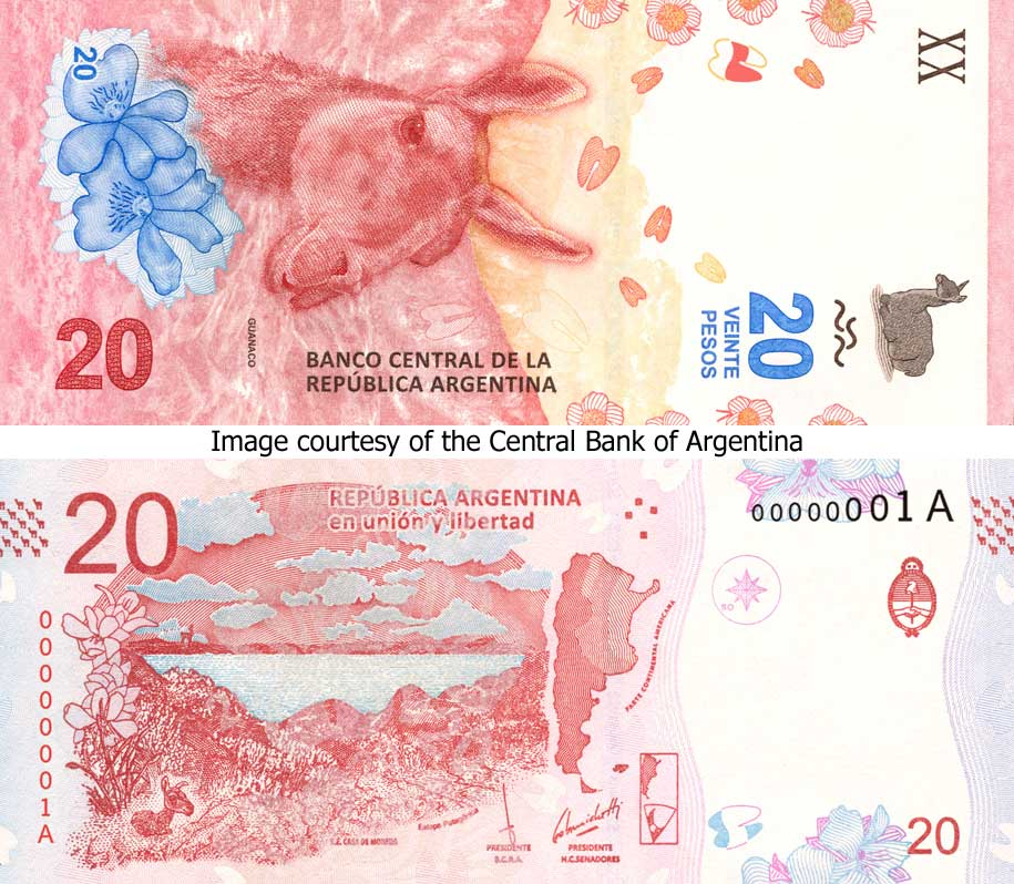 Image of the new 20 peso banknote from the Central Bank of Argentina - 2017.