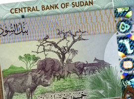 Sudan Central Bank Issues New 50 Pound Banknote
