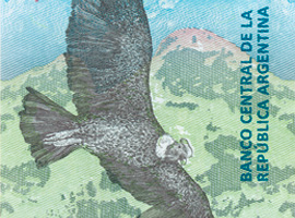 Thumbnail image of the new Argentina 50-peso banknote.