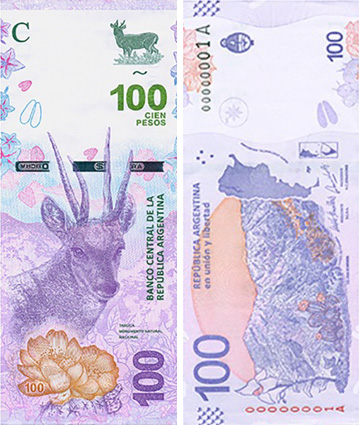 Image of the 2018 Argentina 100 peso banknote.